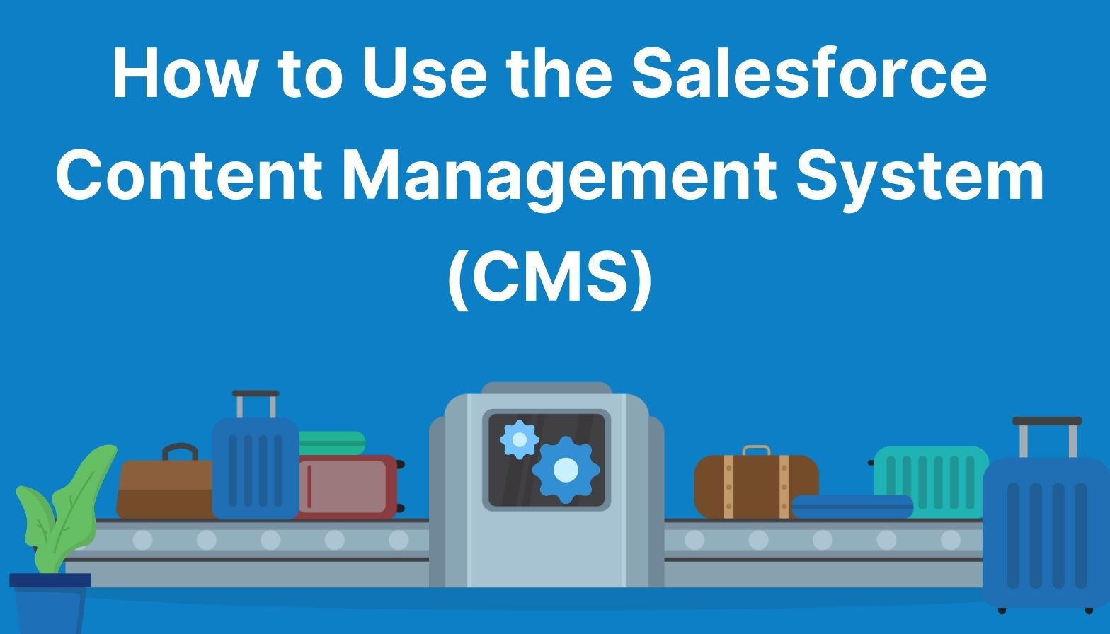 Using the Salesforce Content Management System blog header image