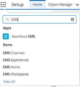Screenshot of how to turn on tab visibility to view all Salesforce CMS features