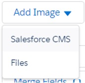 Screenshot using Salesforce Content Management System to import an image